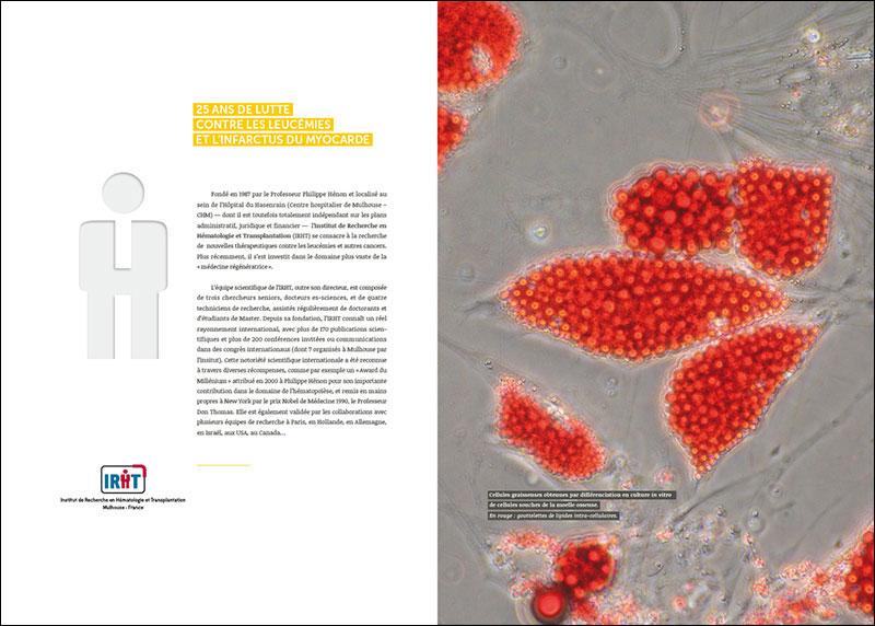 IRHT_Brochure2012_p2-3_MCJ